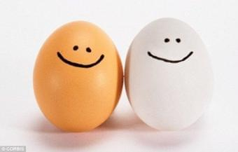Eggs & the Great Cholesterol Myth